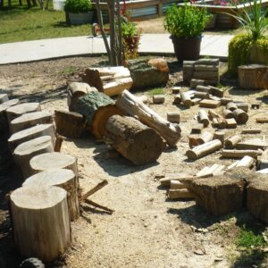 Can Infants and Toddlers Really Use Loose Parts? @ North Asheboro Park